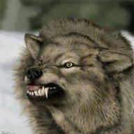 The Skywolf